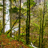 42  G Elowah Falls Trail V