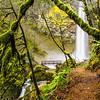 23  G Elowah Falls and Trail V