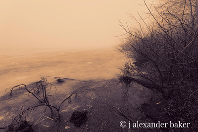 Frozen Pond and Mist 2, Celery Farm, Allendale, NJ