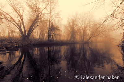 Black Water Fog, Ramapo River, NJ