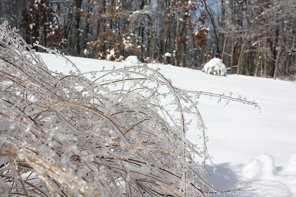 Winter Ice 2014