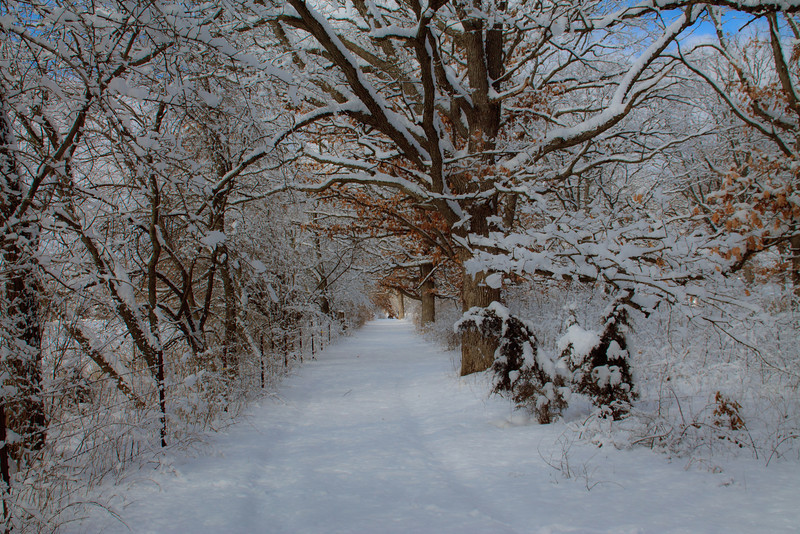 Winter In The Midwest 2013