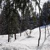 Anzere_Winter_2009_0012