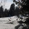 Anzere_Winter_2009_0013