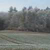 Frozen Landscape Senarclens 2007 (3)