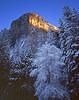 Winter morning. First light on El Capitan