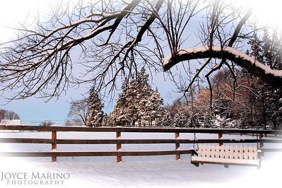 First Snow -- DSC_0659