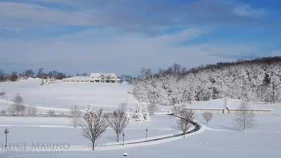 Beautiful countryside in Northern Baltimore County, MD, the morning after a snow storm  -- DSC_0172.