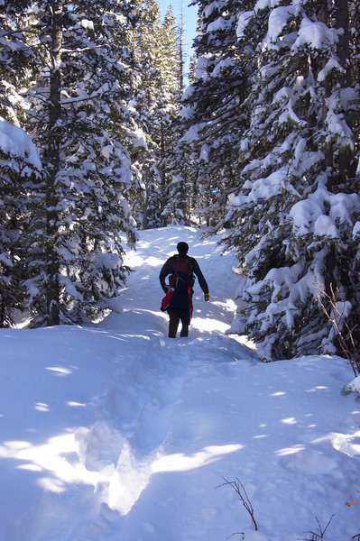 Cutting a snowshoe trail after a late spring storm in the Colorado Indian Peaks Wilderness.