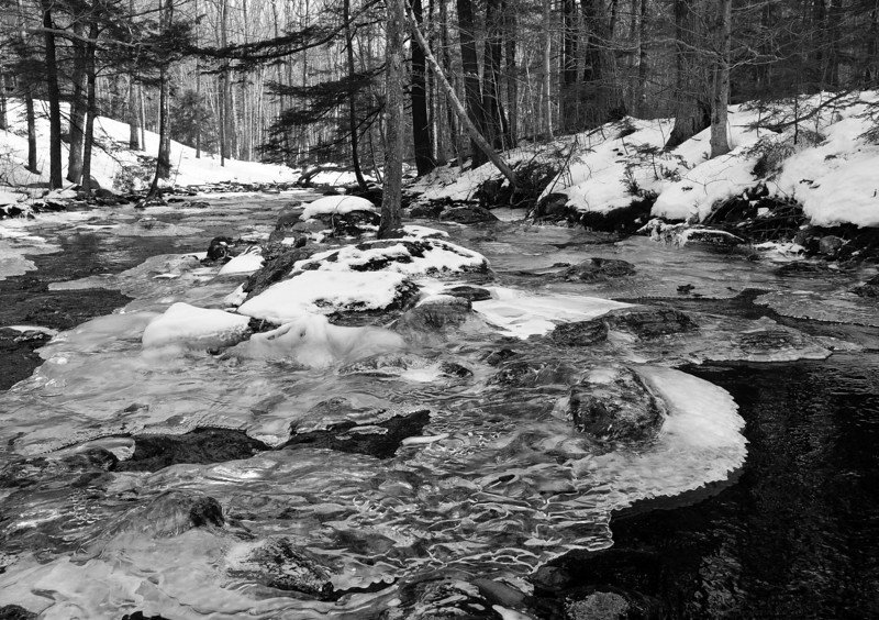 Flagrantly trespassing in this lovely brook.  Oops.  I took many views of this and the black and white conversion really works here.  Compare it with the color one and you'll see what I mean...each rendering serves the subject individually. Oh how digital spoils us.