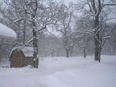 010610-snow2-1