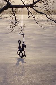 20110221_Winter_Backyard_Swing_044