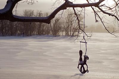 20110221_Winter_Backyard_Swing_007