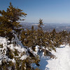Looking down Winslow trail on Mt. Kearsarge Winslow State Park,  NH