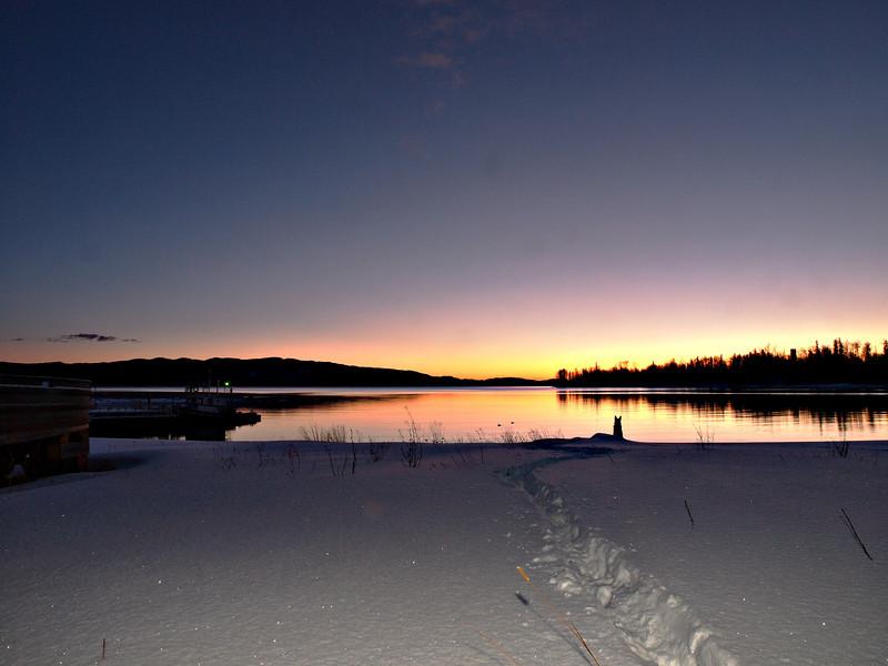 Loki watching the sun rise over Babine Lake, near Granisle BC