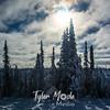33  G Snowy Trees and Sun