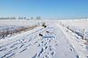 Sneeuwwandeling3