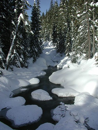 Winter in the Cascade Mtns