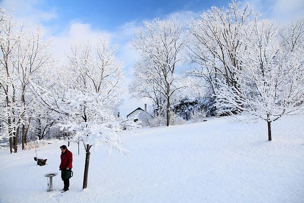 Winter wonderland Feb 2013