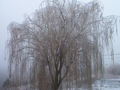 Dec 2010 icestorm