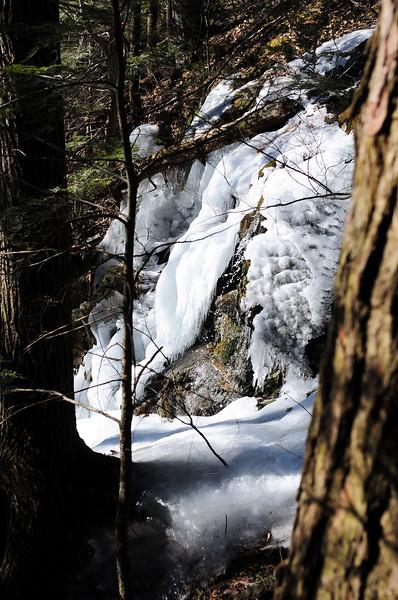 jessie-gerard-trail-8794