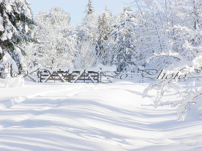 Pat's pic of Sheming's gate in Ladysmith, Canada. Snow, beautiful snow