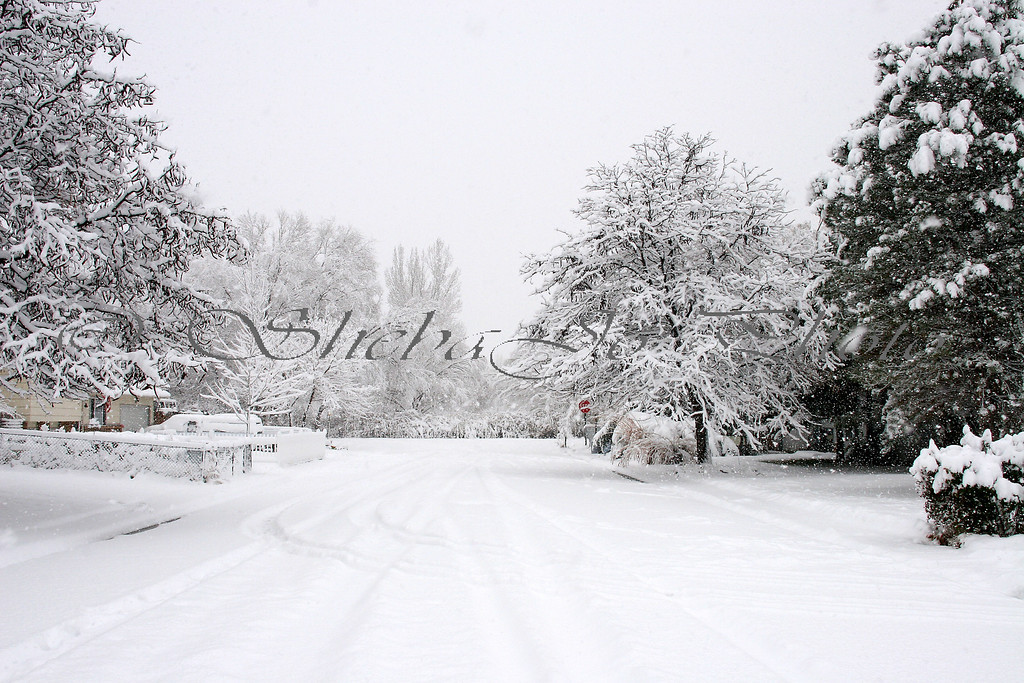 Snow, beautiful snow...my street.