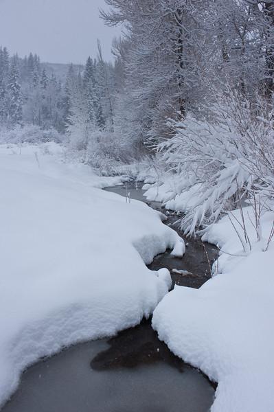 Silent Creek