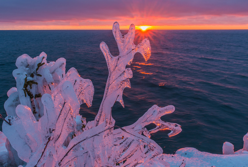 Ice at Sunrise