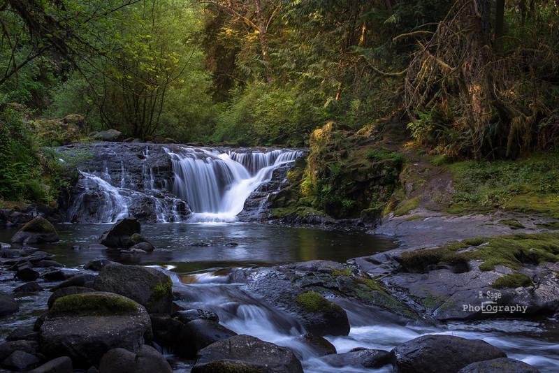 sweet creek falls-9433