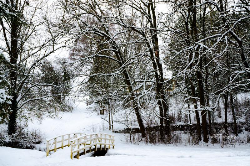 winter park-0487