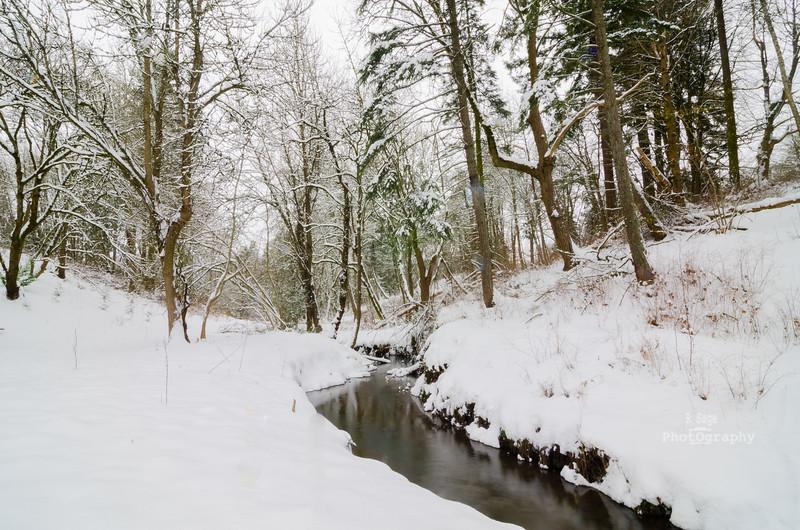 winter creek color-0588