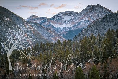 wlc tibble fork 111817222017-Edit