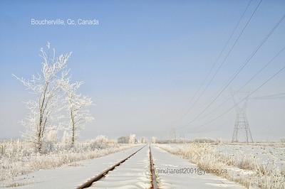 Féérie d'hiver le long du rail