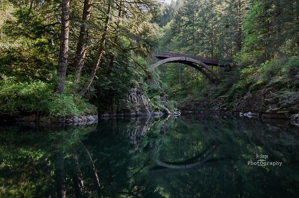 clark river footbridge 3-2455