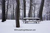 Winter Scene with Picnic Table at Brigham Park, Dane County, Wisconsin