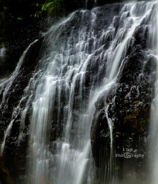north falls cascade-7098