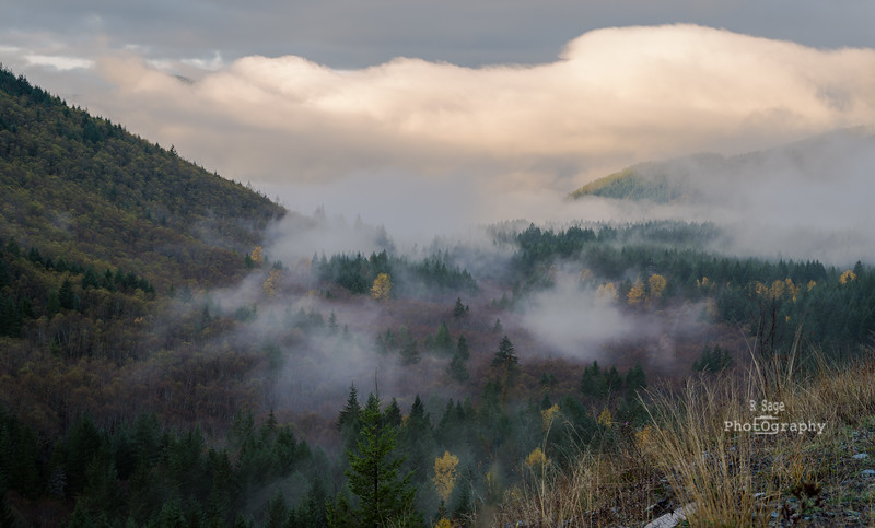 valley fog 2-3652