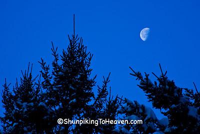 Evergreens and Half Moon, Sauk County, Wisconsin