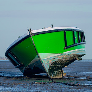 Off to Sea in a Pea Green Boat