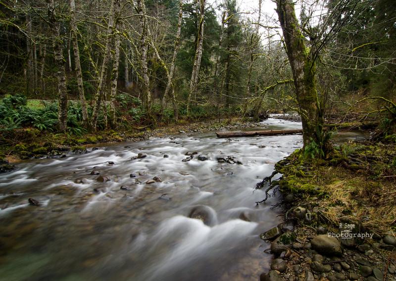 salmon river -8033