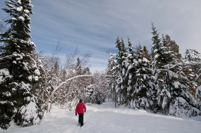 MNWN-10011-2: Snowshoeing in Crosby-Manitou St. Pk.