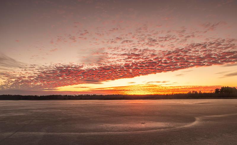 December sunrise at Crex Meadows WMA