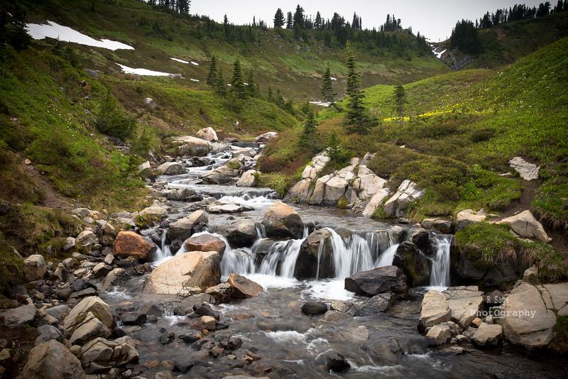 upper myrtle falls-2341