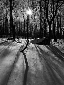 "Winter Sun Published in Outdoor Photographer magazine, April 2009, as  Honorable Mention in  ""Celebrate the Seasons"" contest  Also appeared as First place award in Outdoor Photographer magazine on-line gallery  Awarded Honorable Mention, September 2008, Keene Art Association Art-in-the Park"