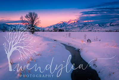wlc Winter scene 012717January 27, 2017-7-Edit