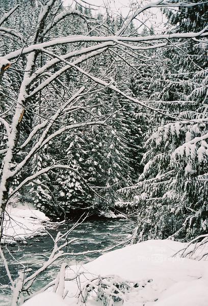 winter river 1