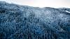 snowy ridge-0075