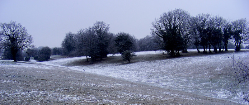 Winter frost epsom downs ice snow