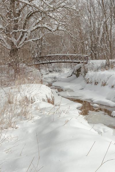 Fresh snow at Elm Creek Park